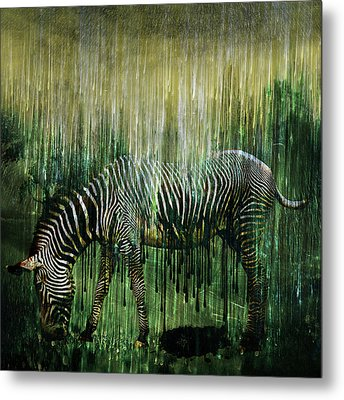 Flowing Stripes Metal Print by Marian Voicu