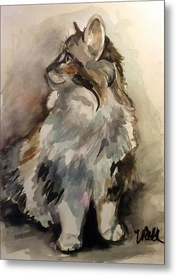 Fluffy Cat Metal Print