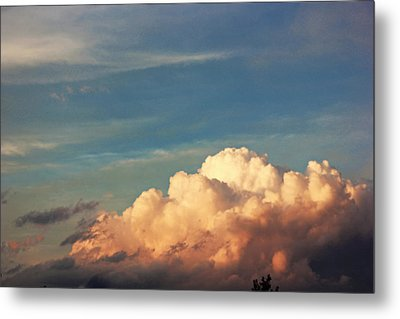 Fluffy Metal Print by Danielle Keltner