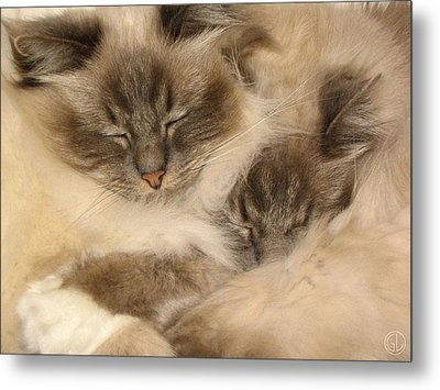 Fluffy Duo Metal Print by Gun Legler