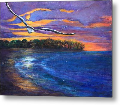 Fly By Night II Metal Print by Susi LaForsch