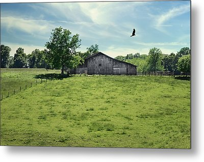 Fly By Metal Print by Steven Michael
