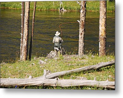 Metal Print featuring the photograph Fly Fishing by Mary Carol Story