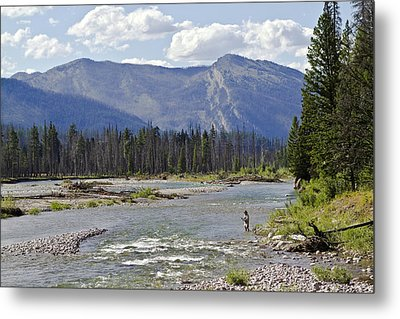 Fly Fishing On The South Fork Of The Flathead River Metal Print by Merle Ann Loman