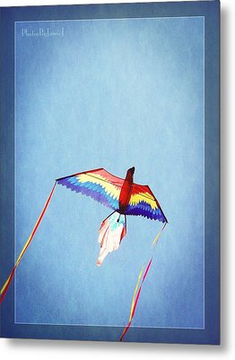 Fly Free Metal Print by Jamie Johnson