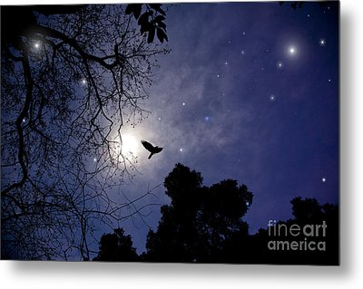 Flying By The Moon Metal Print