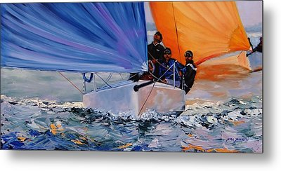 Flying Colors Two Metal Print by Laura Lee Zanghetti