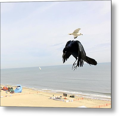 Flying Evil With Bad Intentions Metal Print by Richard Rosenshein