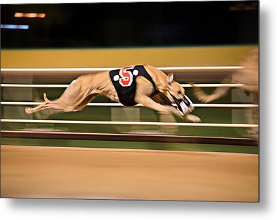 Flying Five Metal Print by Keith Armstrong