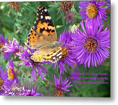 Flying Flower Metal Print by Sylvia Thornton