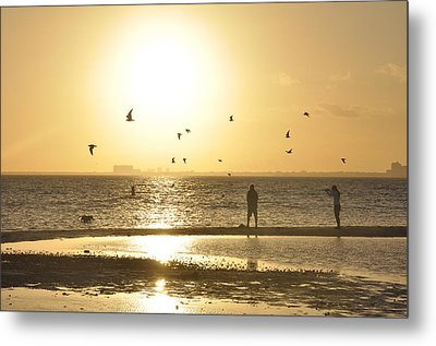 Flying For The Sun Metal Print