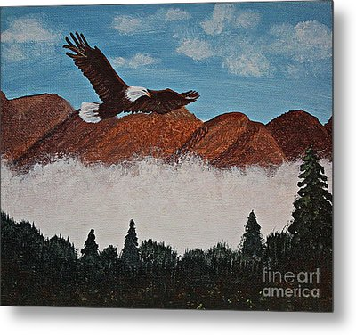 Flying High Metal Print by Barbara Griffin
