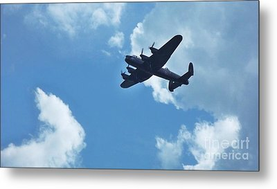 Metal Print featuring the photograph Flying High by John Williams