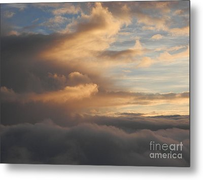 Flying Into Morning Metal Print by Margaret McDermott