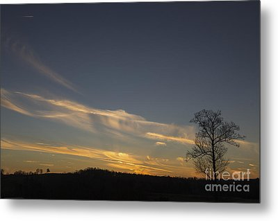 Flying Into The Yellow Sunset Metal Print