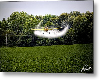 Flying Low Metal Print