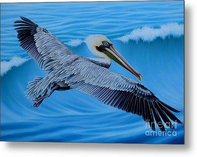 Flying Pelican Metal Print