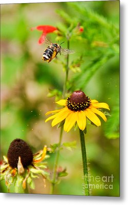 Flying Pollen Metal Print