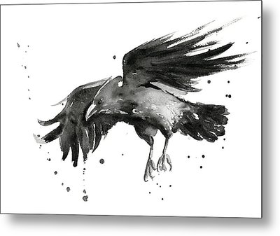 Flying Raven Watercolor Metal Print