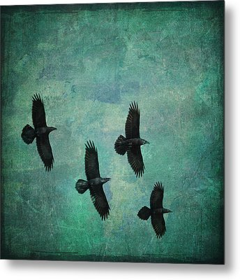 Metal Print featuring the photograph Flying Ravens by Peggy Collins