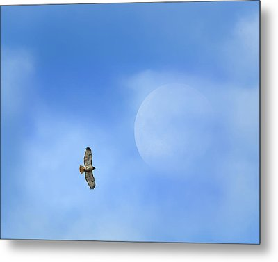 Flying To The Moon Metal Print by Bill Wakeley