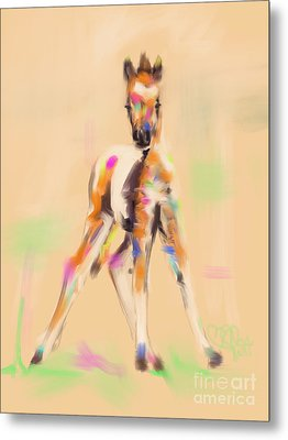 Foal Cute Fellow Metal Print by Go Van Kampen