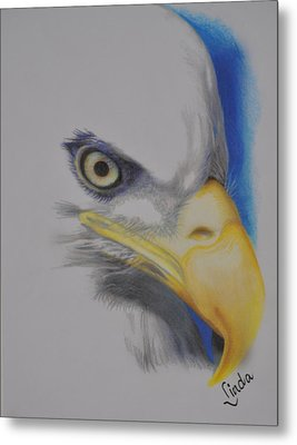 Metal Print featuring the drawing Focused Eagle by Linda Ferreira
