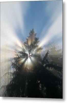 Fog And Light Rays Metal Print