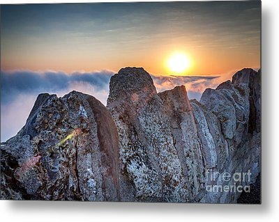 Metal Print featuring the photograph Fog At Garvin Heights by Kari Yearous