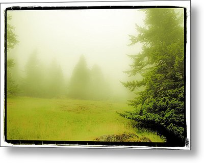 Metal Print featuring the photograph Fog Bank by Craig Perry-Ollila
