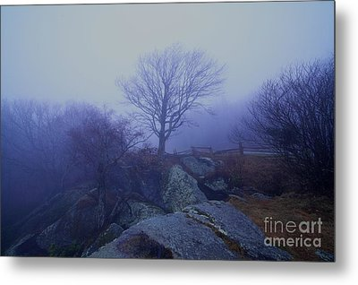 Fog Invasion Metal Print