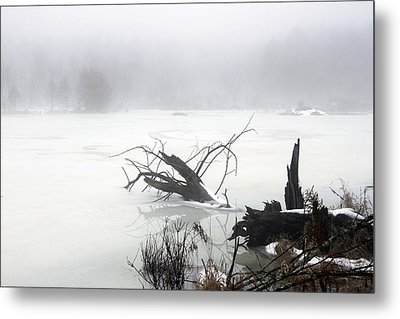Fog On The Pond Metal Print by David Simons