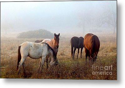 Fog Ponies Metal Print by Julia Hassett