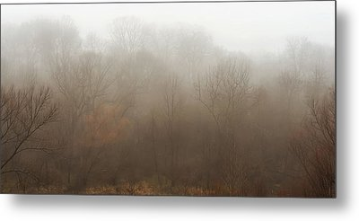 Fog Riverside Park Metal Print by Scott Norris
