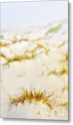 Fog Sand And Dune Grass - Outer Banks Metal Print by Dan Carmichael