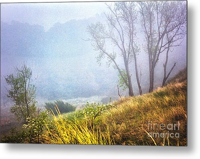 Foggie Dune Colored Metal Print
