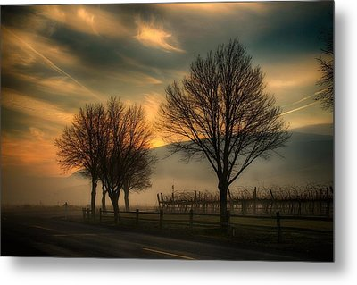 Foggy And Dreamy Metal Print
