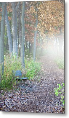 Foggy Autumn Morning Metal Print by Sebastian Musial