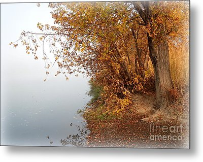 Foggy Autumn Riverbank Metal Print by Carol Groenen