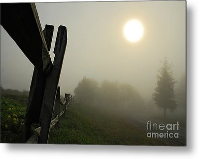 Foggy Country Road Metal Print by Lois Bryan