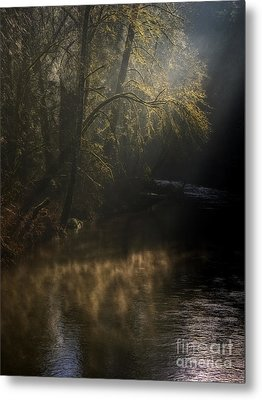 Metal Print featuring the photograph Foggy Creek by Inge Riis McDonald
