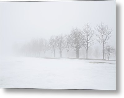 Foggy Day With Snow Metal Print by Donna Doherty