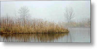 Foggy Duck Pond 1 Metal Print by James Blackwell JR