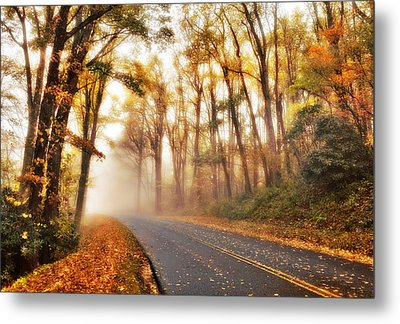 Foggy Fall Wonderland - Blue Ridge Parkway I Metal Print by Dan Carmichael