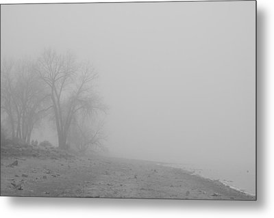 Foggy Lake Shoreline View Bw  Metal Print