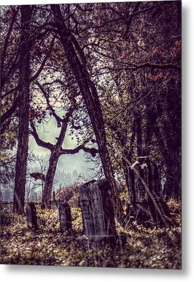 Metal Print featuring the photograph Foggy Memories by Melanie Lankford Photography