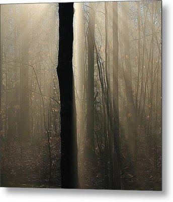 Foggy Mornin' Metal Print