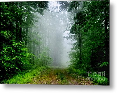 Metal Print featuring the photograph Foggy Morning by Debra Fedchin