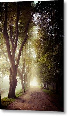 Foggy Morning In The Nesvizh Park Metal Print by Sviatlana Kandybovich