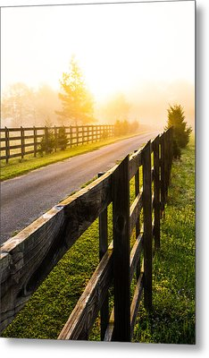 Foggy Morning Metal Print by Shelby  Young